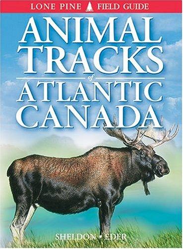 9781551052540: Animal Tracks of Atlantic Canada