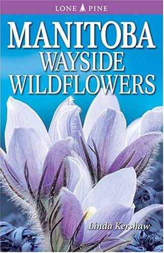 Manitoba Wayside Wildflowers: Linda Kershaw
