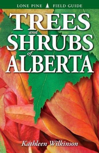 9781551058542: Trees and Shrubs of Alberta