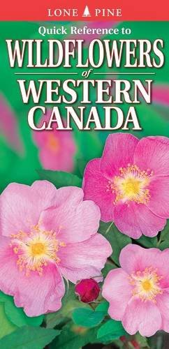 Quick Reference to Wildflowers of Western Canada (Paperback)