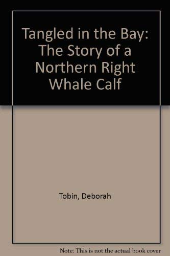 9781551092591: Tangled in the Bay: The Story of a Northern Right Whale Calf