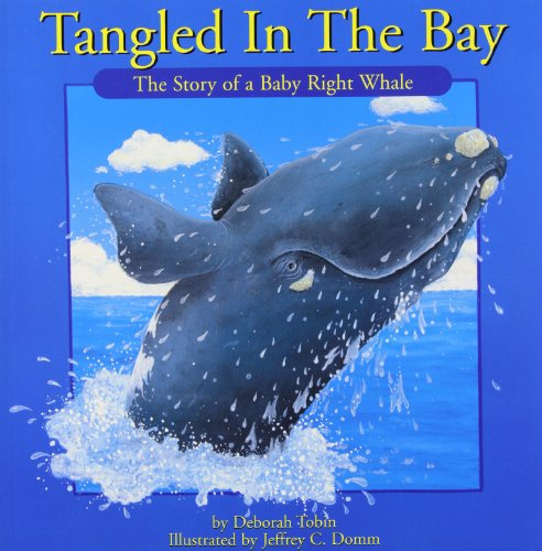 9781551094410: Tangled in the Bay (Natural Heroes)