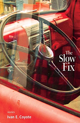 9781551522470: Slow Fix, The