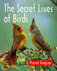 9781552091203: The Secret Lives of Birds