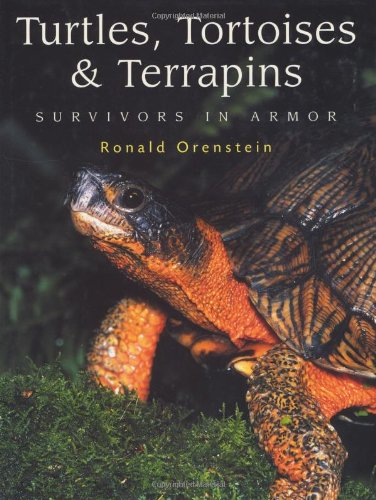 Turtles, Tortoises and Terrapins: Survivors in Armor