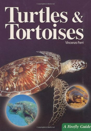 9781552096314: Turtles and Tortoises (A Firefly Guide)