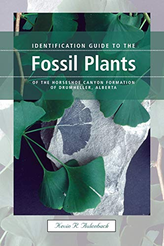Identification Guide to the Fossil Plants of the Horseshoe Canyon Formation of Drumheller, Alberta:...