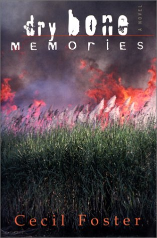 9781552633113: Dry bone memories