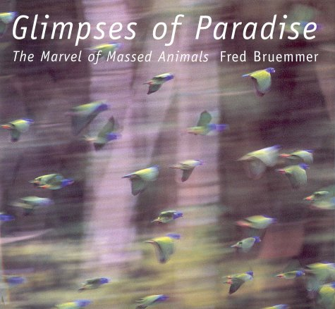 Glimpses of Paradise: The Marvel of Massed: Bruemmer, Fred