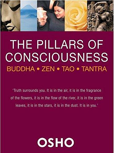 9781552675823: The Pillars of Consciousness