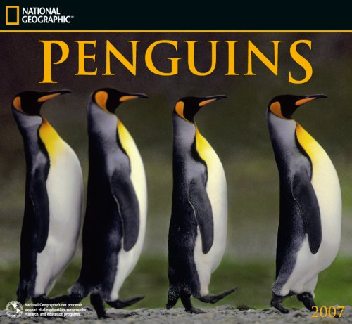 9781552758533: Penguins National Geographic 2007 Calendar