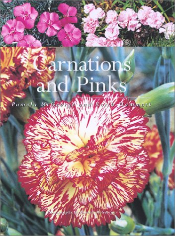9781552975541: Carnations and Pinks