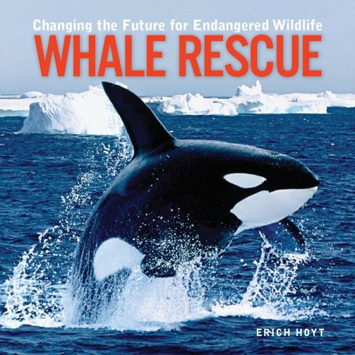 Whale Rescue: Changing the Future for Endangered Wildlife (Firefly Animal Rescue): Erich Hoyt