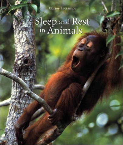 Sleep and Rest in Animals -