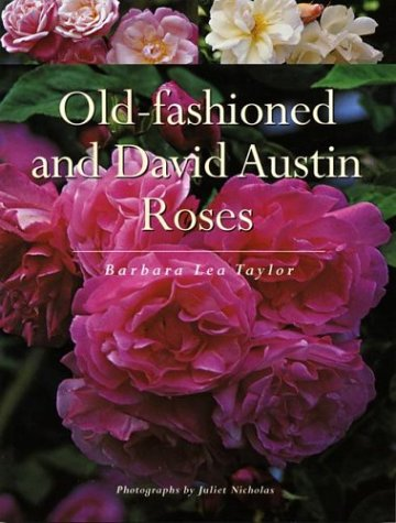 9781552978801: Old-fashioned and David Austin Roses