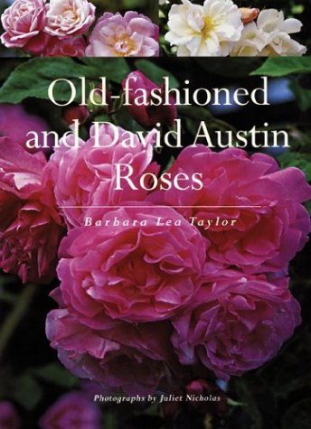 9781552978818: Old-fashioned and David Austin Roses