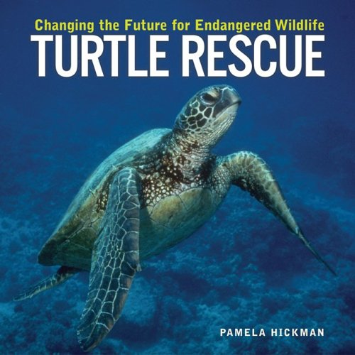 9781552979150: Turtle Rescue: Changing the Future for Endangered Wildlife (Firefly Animal Rescue)
