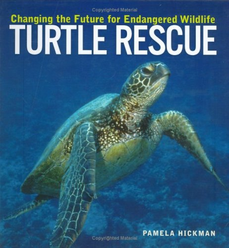 9781552979167: Turtle Rescue: Changing the Future for Endangered Wildlife (Firefly Animal Rescue)