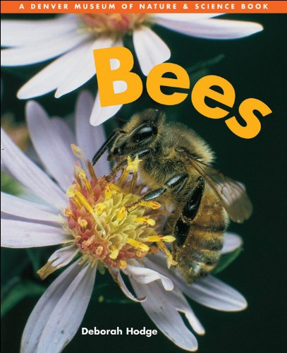 9781553370659: Bees (Denver Museum Insect Books)