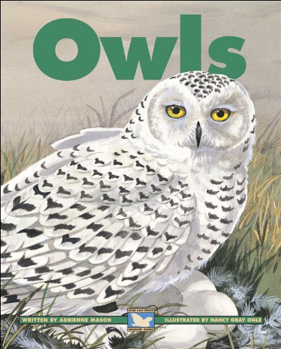 9781553376231: Owls (Kids Can Press Wildlife Series)