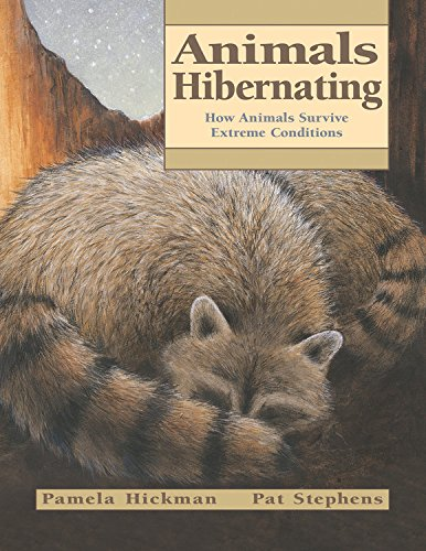 9781553376637: Animals Hibernating: How Animals Survive Extreme Conditions (Animal Behavior)