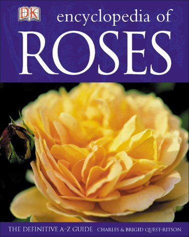 Encyclopedia Of Roses: Kindersley, Dorling