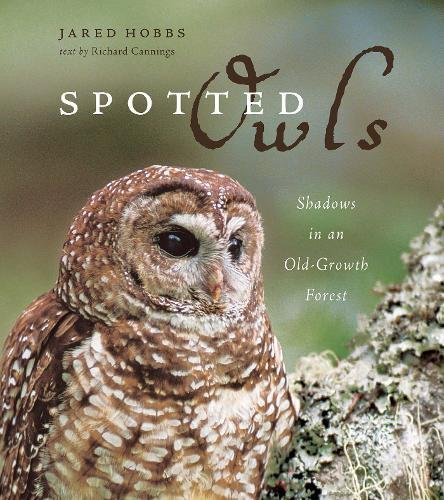 9781553652410: Spotted Owls: Shadows in an Old-Growth Forest