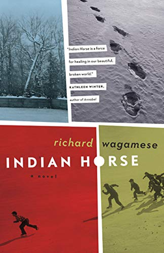 9781553654025: Indian Horse