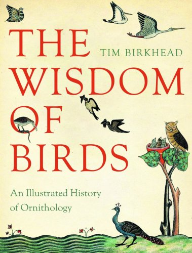 9781553654261: Wisdom of Birds: An Illustrated History of Ornithology