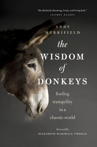 The Wisdom of Donkeys: Finding Tranquility in a Chaotic World: Andrew Merrifield