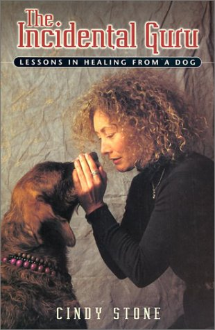 9781553662419: The Incidental Guru: Lessons in Healing from a Dog