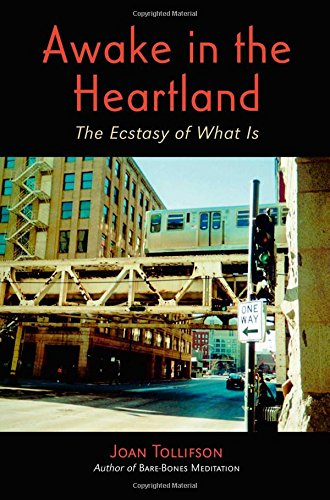 Awake in the Heartland : The Ecstacy: Joan Tollifson