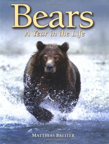 9781554070770: Bears: A Year in the Life