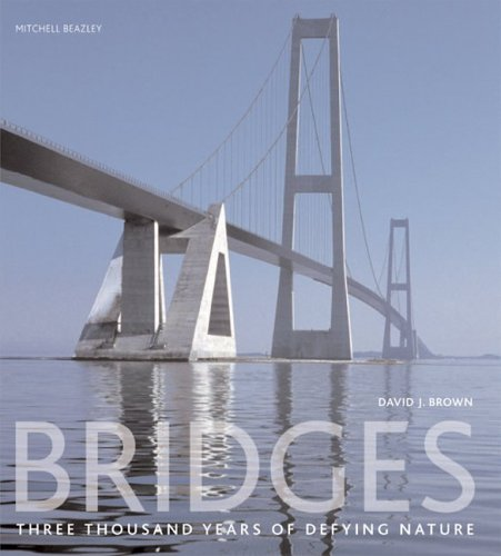 9781554070992: Bridges: Three Thousand Years of Defying Nature