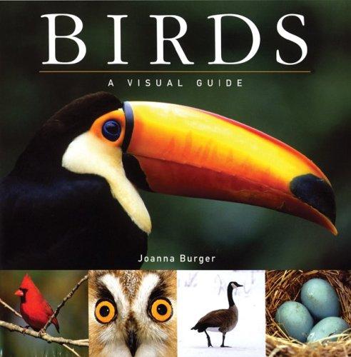 9781554071777: Birds: A Visual Guide (Visual Guides)
