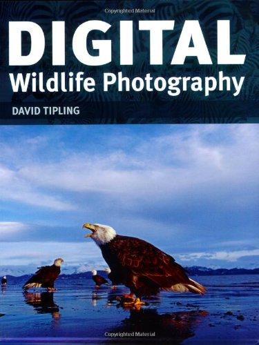 9781554073054: Digital Wildlife Photography