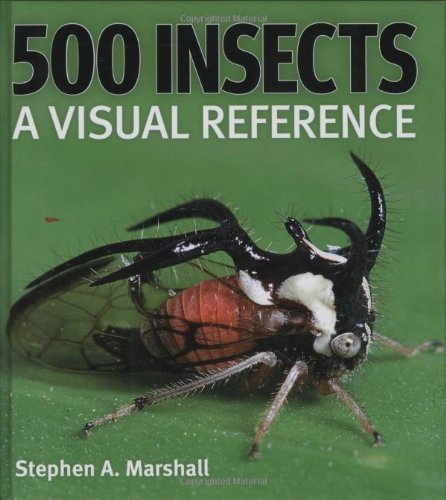 500 Insects: A Visual Reference: Marshall, Stephen
