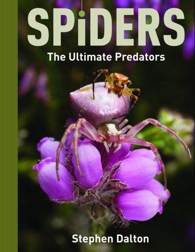 Spiders: The Ultimate Predators (1554073464) by Dalton, Stephen