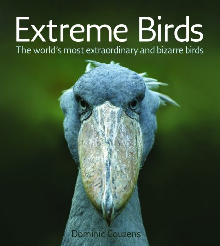 9781554074235: Extreme Birds: The World's Most Extraordinary and Bizarre Birds