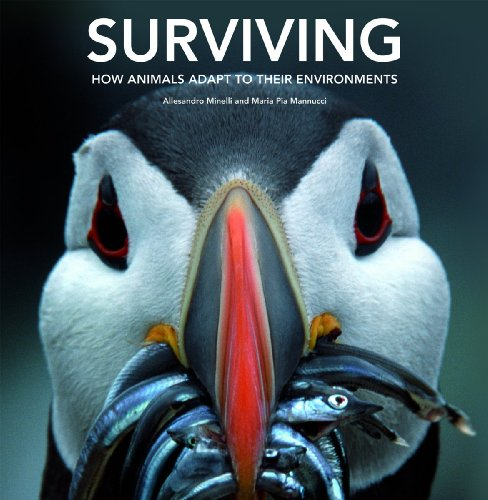 9781554075201: Surviving: How Animals Adapt to Their Environments