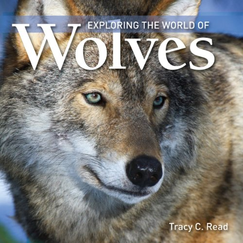 9781554076550: Exploring the World Of Wolves