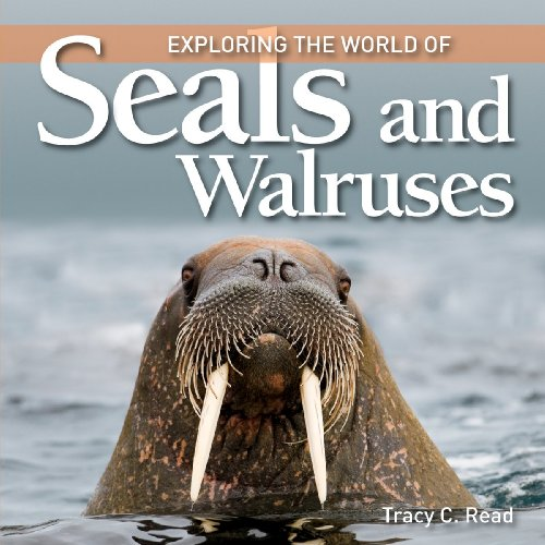 9781554077977: Exploring the World of Seals and Walruses