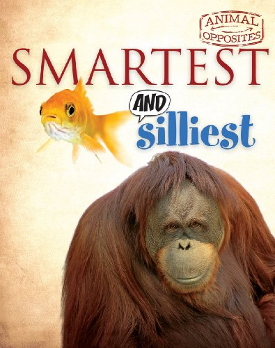 Smartest and Silliest (Animal Opposites): Camilla Bedoyere