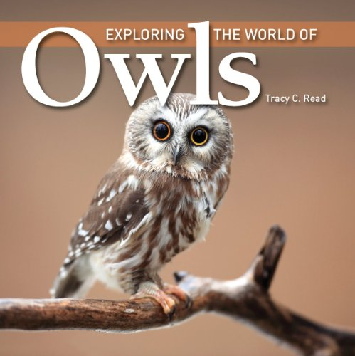 9781554078837: Exploring the World of Owls