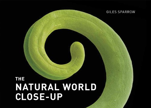 9781554079247: The Natural World Close-Up