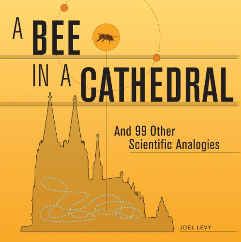9781554079599: A Bee in a Cathedral: And 99 Other Scientific Analogies
