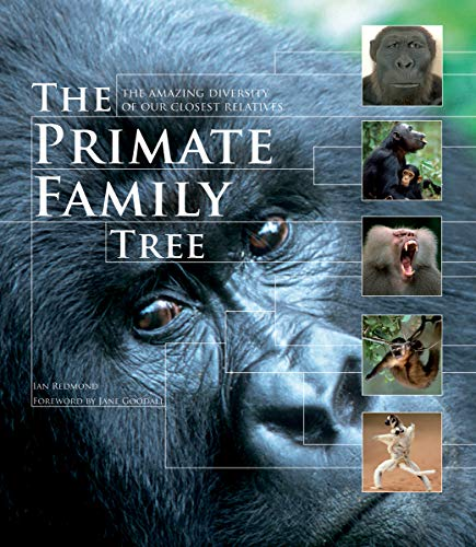 9781554079643: The Primate Family Tree: The Amazing Diversity of Our Closest Relatives