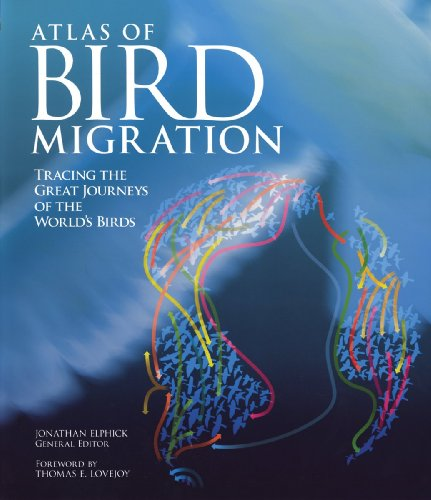 9781554079711: Atlas of Bird Migration: Tracing the Great Journeys of the World's Birds