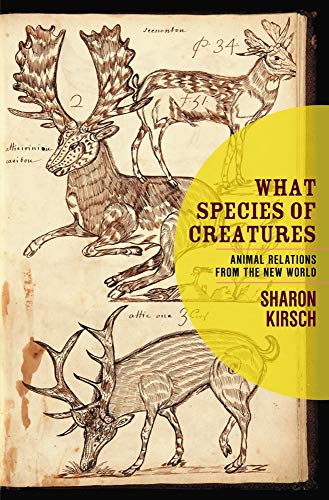 What Species of Creatures: Animal Relations from the New World: Kirsch, Sharon