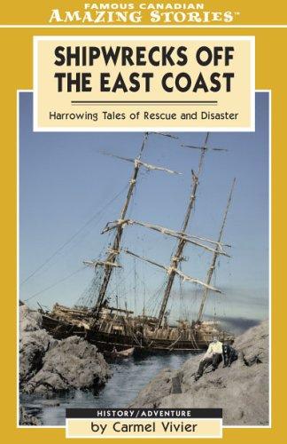 9781554390120: Shipwrecks off the East Coast (Amazing Stories)